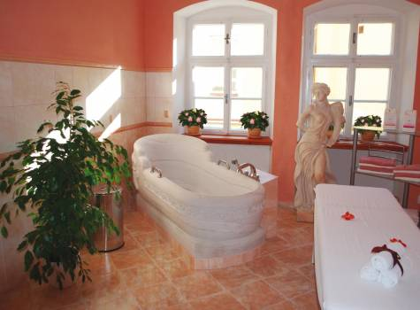 Villa Friedland**** - Wellness centrum Jizera.jpg
