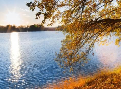 Podzimní relaxace v Tree of Life