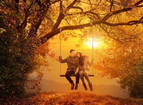 Podzimní symfonie v Tree of Life